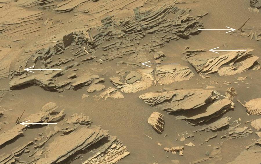 Марсианские иллюзии и земные заблуждения - 21