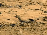 Марсианские иллюзии и земные заблуждения - 3