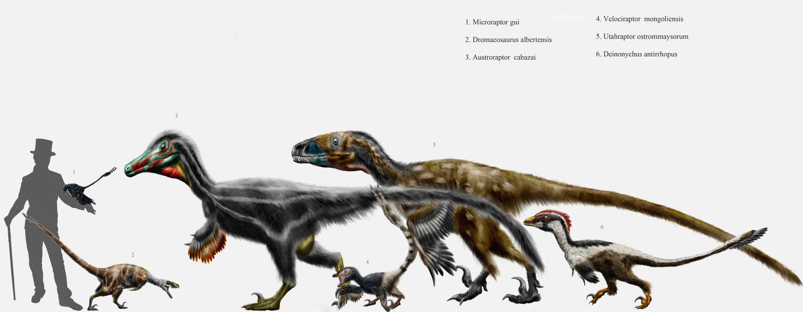 Сравнительная физиология динозавров и птиц. Популярно о малоизвестном. Часть 1 «Кости титанов» - 2