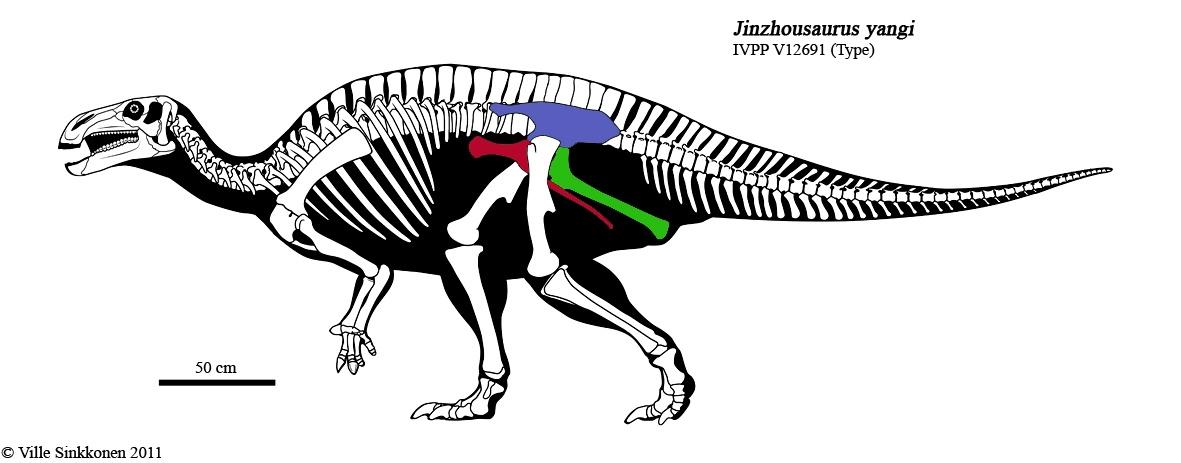 Сравнительная физиология динозавров и птиц. Популярно о малоизвестном. Часть 1 «Кости титанов» - 6