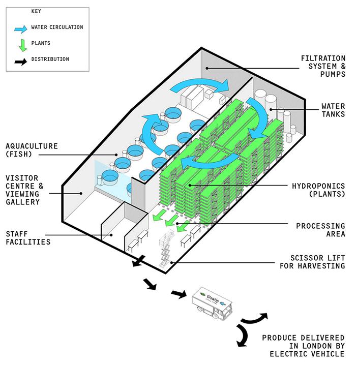 В подземных бункерах Лондона теперь выращивают салат - 3