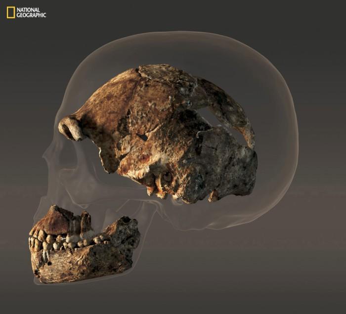 Homo naledi: обнаружен новый вид древних людей - 5
