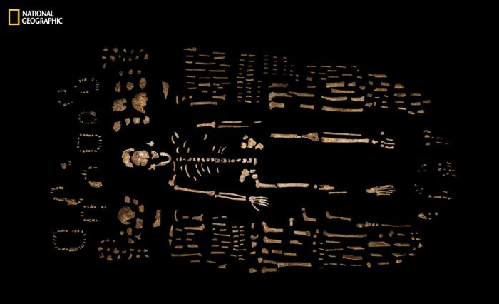 Homo naledi: обнаружен новый вид древних людей - 7