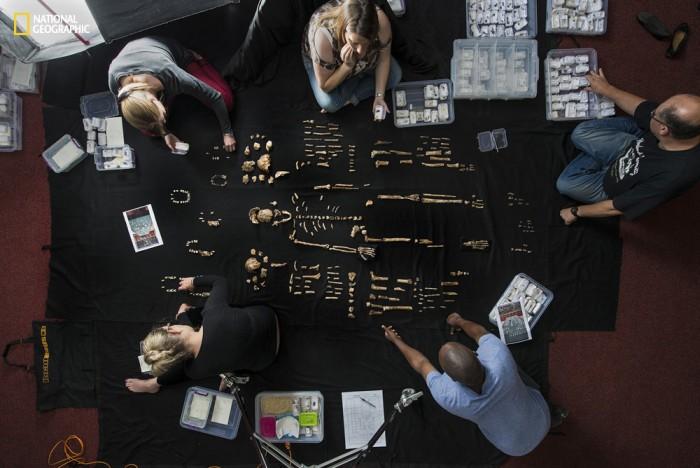 Homo naledi: обнаружен новый вид древних людей - 8