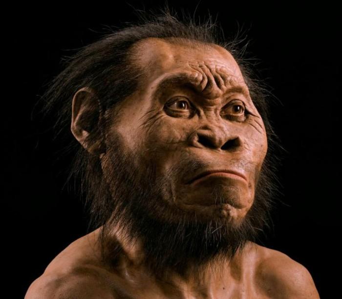 Homo naledi: обнаружен новый вид древних людей - 1