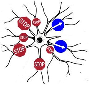 Как работает наш мозг или как смоделировать душу? - 7