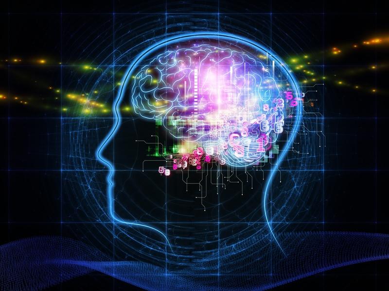 Как работает наш мозг или как смоделировать душу? - 1