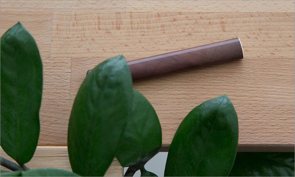 Пар из сигар. Электронная сигарета WoodStick как способ бросить курить - 1