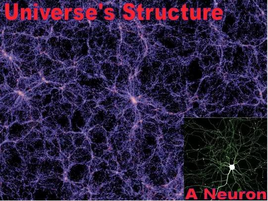 Мозг. Голографическая память. Биология квантовых вычислений - 1