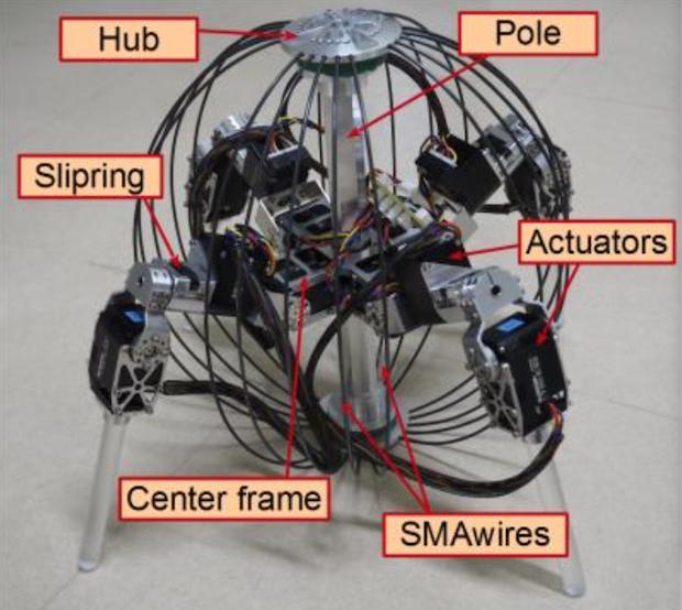 Конечности робота проектировались таким образом, чтобы перемещаться по неровной поверхности