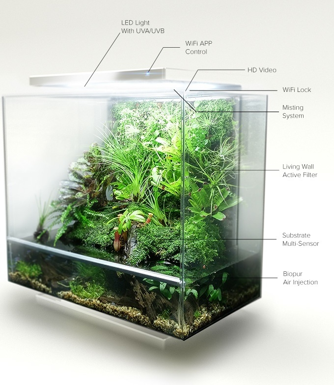 Biopod — умная экосистема в миниатюре с Kickstarter - 4