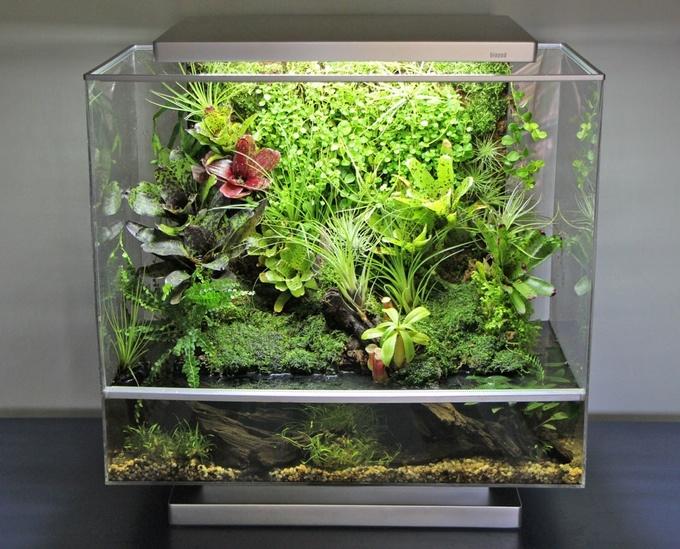 Biopod — умная экосистема в миниатюре с Kickstarter - 7