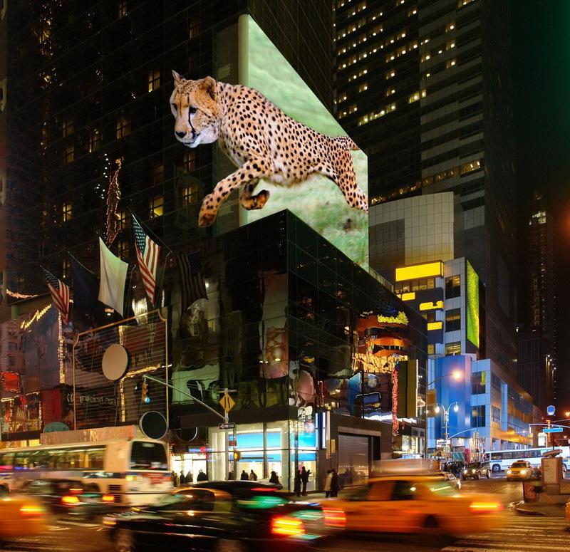 Огромные трехмерные дисплеи от TriLite Technologies позволят просматривать объемные изображения без 3D-очков - 3