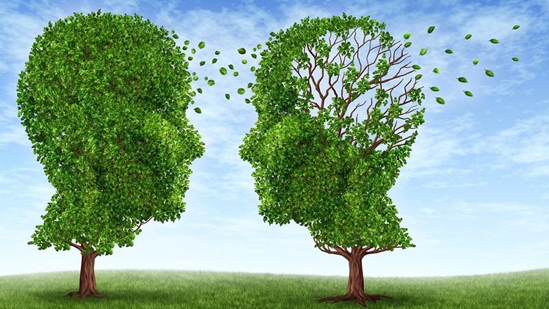 Психология постановки целей: стоит ли рассказывать о них другим? - 1