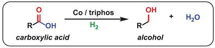 Найден дешёвый катализатор, который превращает карбоновые кислоты в алкоголь - 1