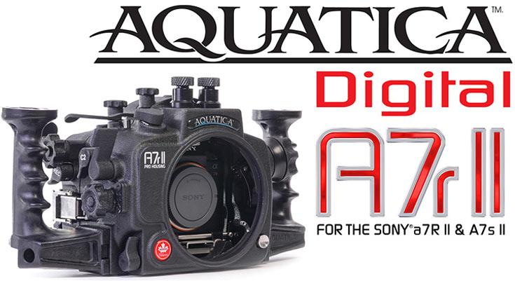 Данных о цене и сроке начала продаж Aquatica A7r II пока нет