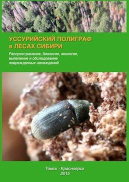 Пихтовые леса Сибири уничтожают жуки размером два миллиметра - 15