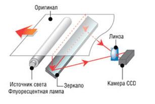 Руководство по выбору сканера для дома и офиса - 3