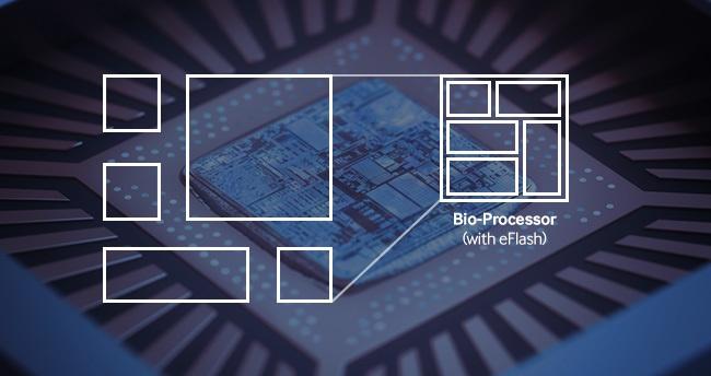 Компания Samsung анонсировала новый био-процессор для носимых устройств - 3