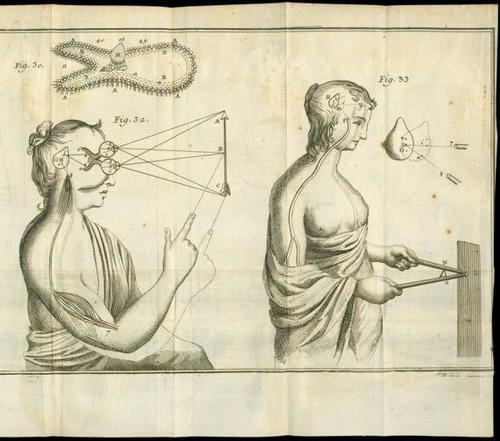 История изучения мозга от Древнего Египта до начала XX века - 24