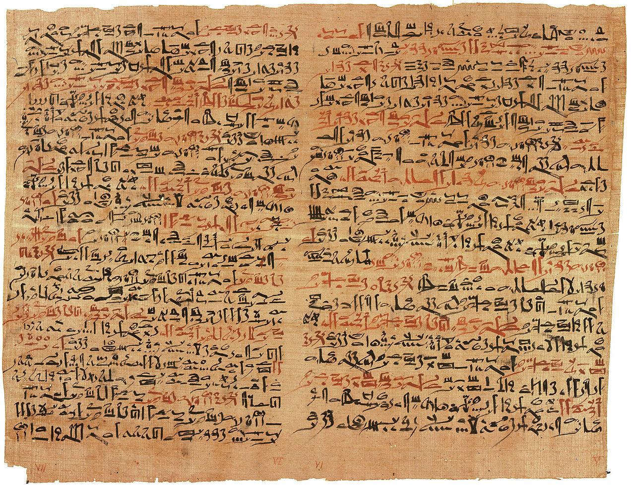 История изучения мозга от Древнего Египта до начала XX века - 4
