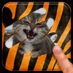 Иконка в Google Play — эксперименты и результаты в графиках - 2