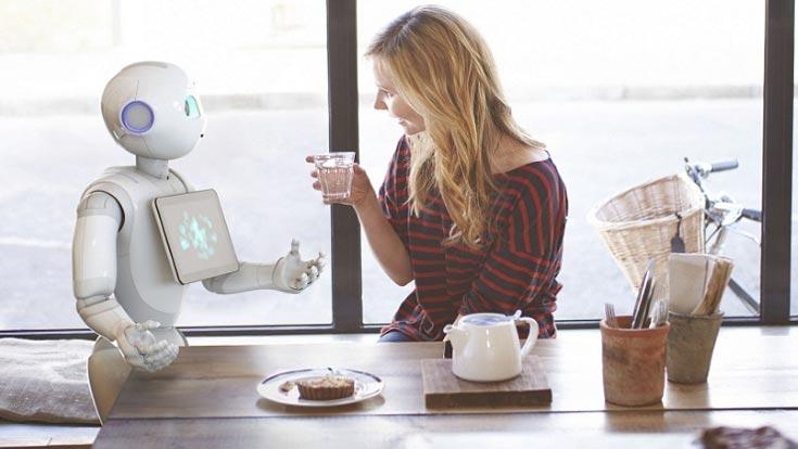 Самыми распространенными будут роботы для работы по дому