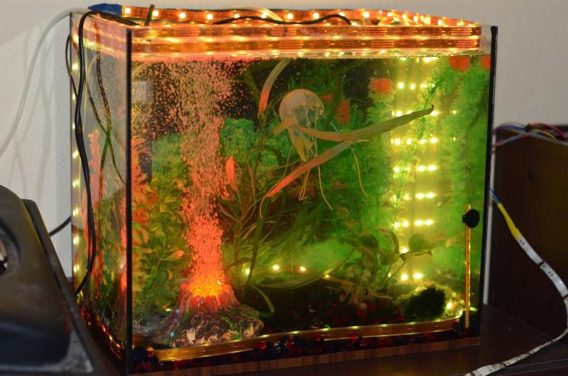 Система автоматического управления аквариумом на Arduino - 1