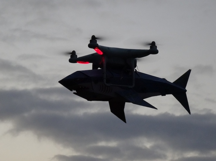 Австралия будет бороться с акулами при помощи дронов