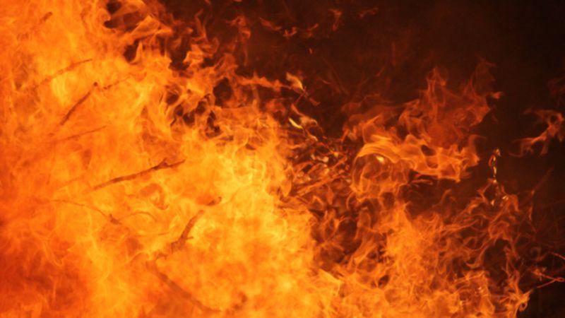 Австралиец спас дом и животных от огня, находясь за 3000 км от дома, благодаря умной системе полива - 1