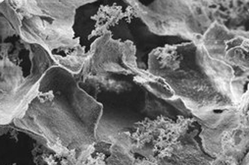 Суперабсорбирующий материал как инструмент для ликвидации последствий разлива нефти - 1