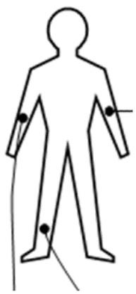 Получение сигнала ЭКГ на ПК и задел на ЭЭГ - 4