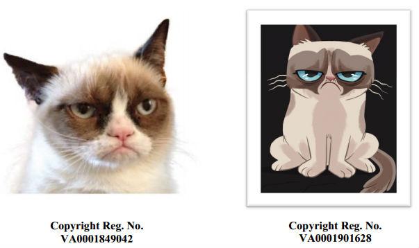 Сердитый котик судится с производителем кофе из-за нарушения копирайта - 2