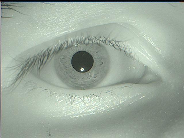 Постановка задачи компьютерного зрения - 25