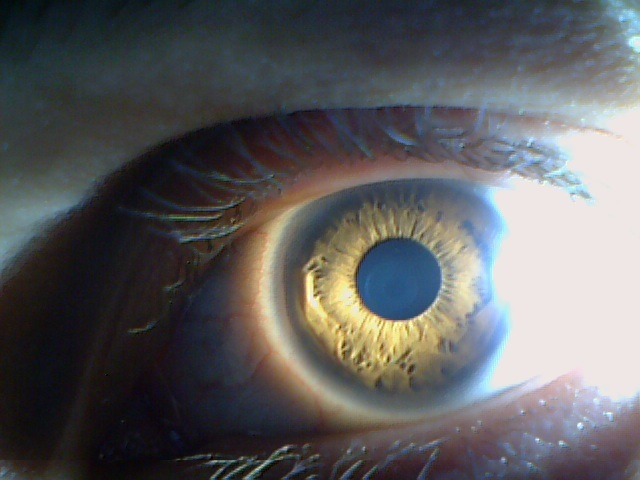 Постановка задачи компьютерного зрения - 29