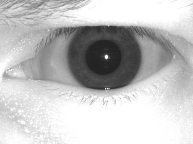 Постановка задачи компьютерного зрения - 30