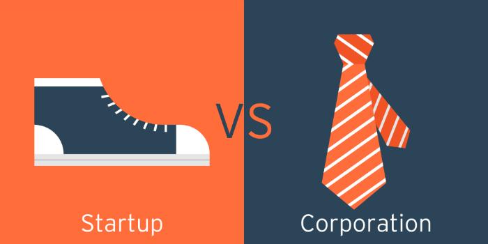 Большие компании vs стартапы: где лучше работать программисту (опыт США) - 1