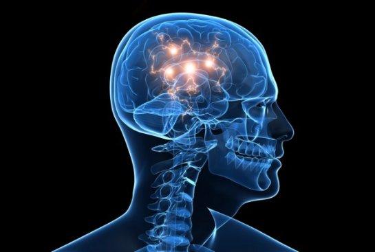 Человеческий мозг может запомнить весь интернет