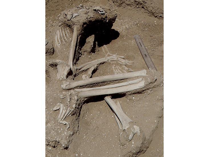 Массовые убийства эпохи Голоцена - 4