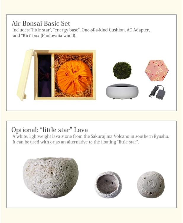«Air Bonsai» – парящее дерево - 3