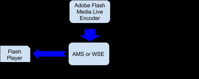 Схема проверки трансляции через Adobe Flash Live Encoder