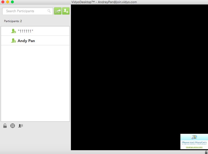 Два участника подключены к комнате в Vidyo