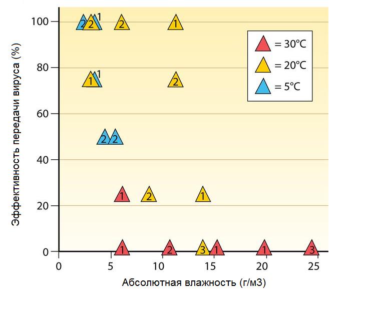 Микроклимат против гриппа: как убить вирус с помощью вентиляции и увлажнителя - 3