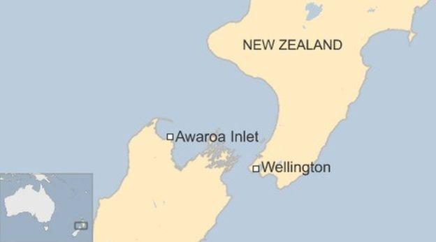 Краудфандинг позволил жителям Новой Зеландии выкупить пляж у бизнесмена, сделав его общественным - 2