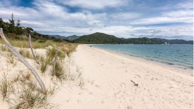 Краудфандинг позволил жителям Новой Зеландии выкупить пляж у бизнесмена, сделав его общественным - 1