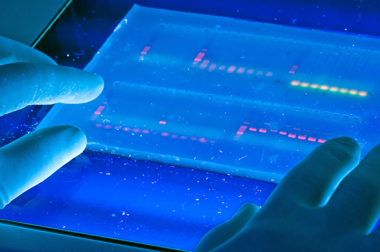 Пятничный формат: ДНК и решение проблемы хранения данных - 1