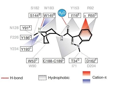 Предсказание биологической активности молекул. Часть 3а. Точно в цель - 9