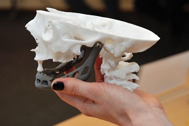 3D-принтеры и удивительные изделия из них - 5