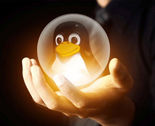 Линус Торвальдс представил релиз Linux Kernel 4.5. Кодовое имя «Blurry Fish Butt» - 1