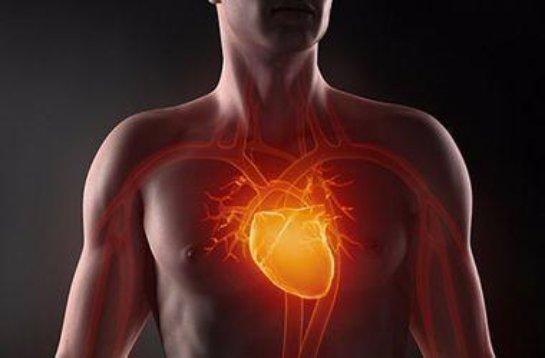 Ученые выяснили, какие профессии опасны для сердца